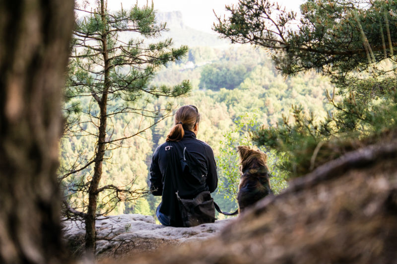Owner and Dog overlooking forest